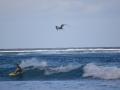 2013 June Nikon Bora Bora 084