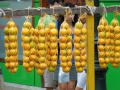 fruitTahiti